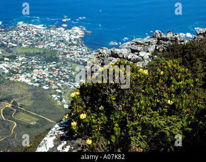 CAPE TOWN SOUTH AFRICA October View across the City Clifton and Camps Bay from the top of Table Mountain - Stock Photo