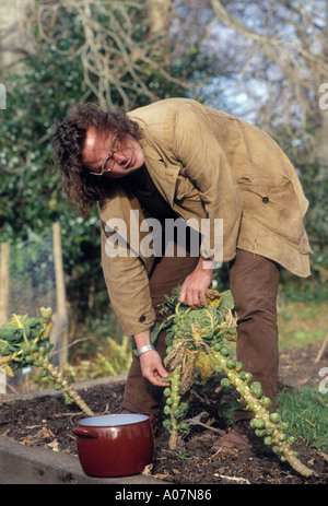 Hugh Fearnley Whittingstall TV food Chef collects sprouts at the River Cottage in Dorset - Stock Photo