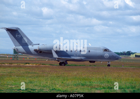 Canadair CC-144 Challenger Military Transport.  GAV 4023-383 - Stock Photo