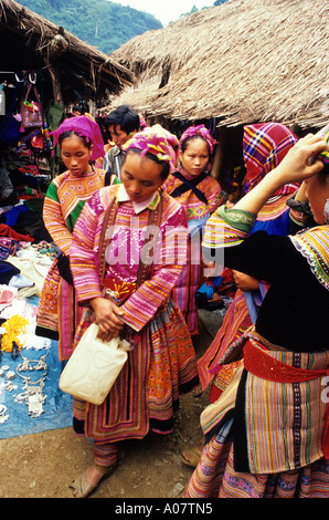 Flower Hmong Woman Coc Ly Market Vietnam - Stock Photo