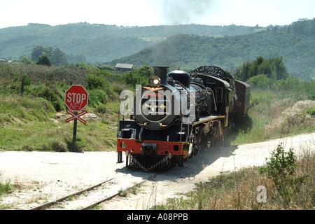 The Outeniqua Choo Tjoe steam train in rural setting near Wilderness western Cape South Africa RSA passes unmanned - Stock Photo