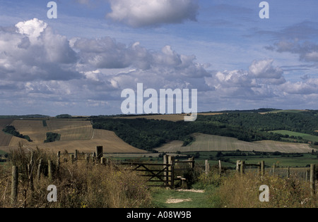 The South Downs Way above the Arun valley with Bignor Hill in the distance South Downs near Amberley West Sussex. - Stock Photo