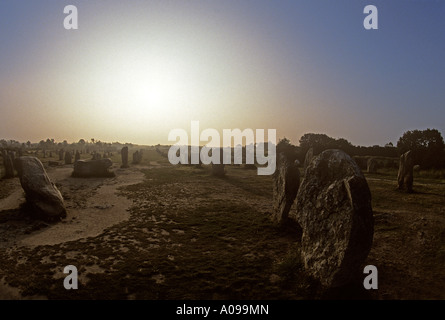 Le Menec Alignments many rows of menhirs at dawn on the north west side of Carnac Brittany - Stock Photo
