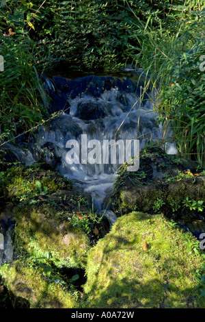 Stream waterfall Chinese Hillside Garden Royal Botanic Garden Edinburgh Inverleith - Stock Photo