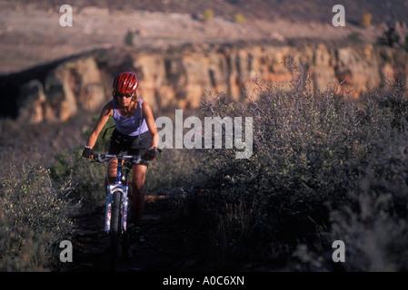 Monuntain biking - Stock Photo