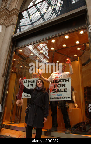 Peta animal rights protesters take over the Prada shop window in the Galleria Vittorio Emanuele in Milan, Fashion - Stock Photo