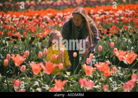 Mother and daughter in tulip field at Greengables Farm Peoria Linn County Willamette Valley Oregon - Stock Photo