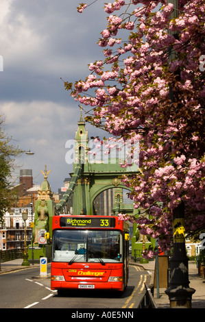 Hammersmith Bridge in spring photographed from the Barnes side London United Kingdom - Stock Photo