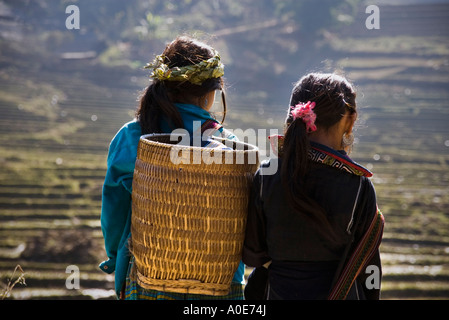 Rear view of two young Black H'Mong girls with a woven bamboo basket, standing facing terraced rice paddies near - Stock Photo