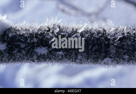 Close up of ice crystals formed on wooden stick - Stock Photo