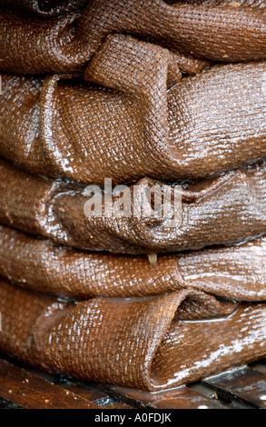 Crushed apples wrapped in stacked hessian cloths to filter juice from apple pulp to make cider UK - Stock Photo