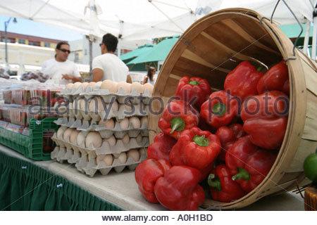 Miami Beach Florida Normandy Village Marketplace Hispanic produce vendor red peppers eggs - Stock Photo