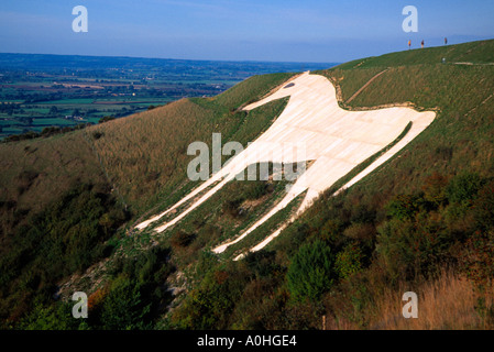 White Horse Carved Into The Chalk Downland At Westbury, Wiltshire, England, U.K. - Stock Photo