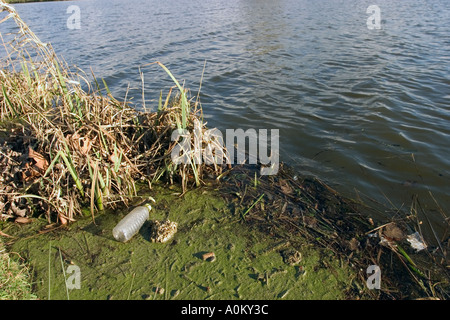 plastic bottle in a french river  - Stock Photo