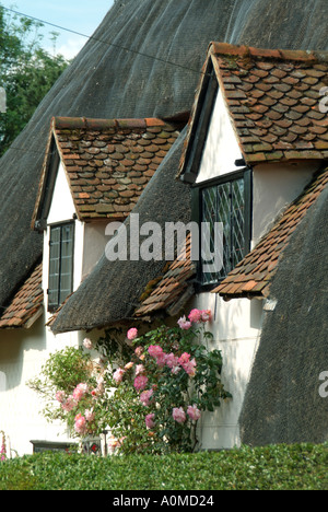 Much Hadham village close up details of tiled dormer windows set into a mainly thatched roof - Stock Photo