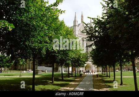 Hampshire, Winchester Cathedral, England, UK - Stock Photo