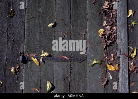 close up detail weather weathered wooden wood door leaves leaf autmn fall seasonal iron metal lock hinge - Stock Photo