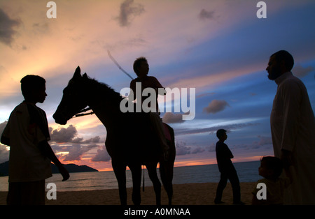horse and people on the beach at sunset, photo by Bruce Miller 11 2004 - Stock Photo