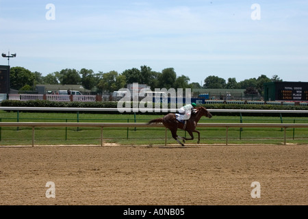 Leading horse sprinting for the finish line during horse race at Churchill downs - Stock Photo