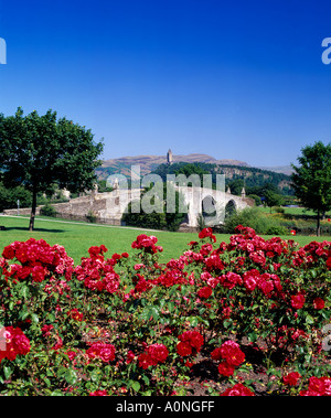 Scotland, Stirling City, Stirling Bridge across the River Forth - Stock Photo