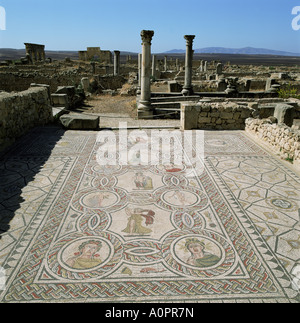 Mosaics from the 3rd century Volubilis UNESCO World Heritage Site Morocco North Africa Africa - Stock Photo