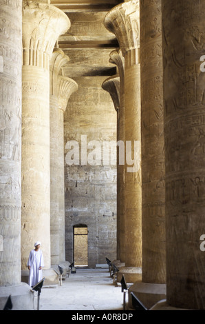 Columns in the hypostyle hall Temple of Horus Edfu Egypt North Africa Africa - Stock Photo