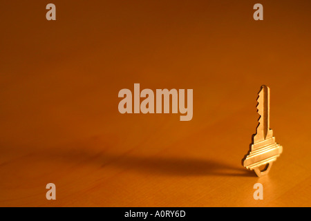 A bright single gold key standing on end on a smooth wooden surface - Stock Photo