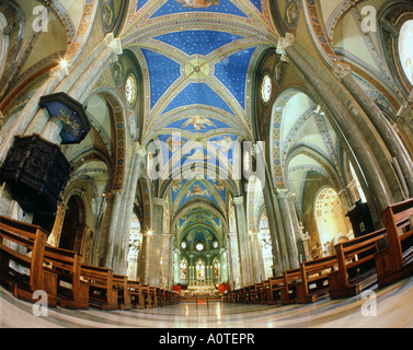 Nave Chiesa di Santa Maria Sopra Minerva - Stock Photo