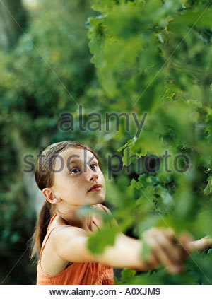 Girl looking at plant - Stock Photo