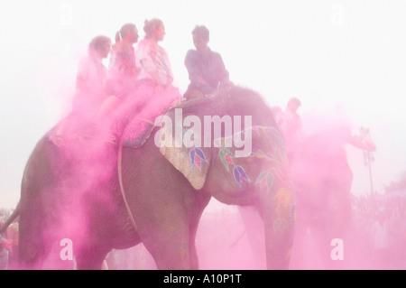 Group of people riding elephants, Elephant Festival, Jaipur, Rajasthan, India - Stock Photo