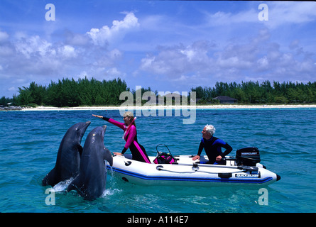 A PAIR OF ATLANTIC BOTTLE NOSE DOLPHINS Tursiops truncatus CAVORT NEAR A SMALL INFLATABLE BOAT IN THE BAHAMAS - Stock Photo
