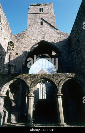 The many ageing arches at the 13th century partially restored Sligo Abbey - Stock Photo