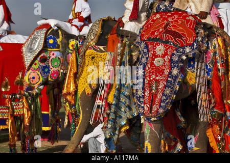 Elephants painted and decorated, Elephant Festival, Chaugan Stadium, Jaipur, Rajasthan, India, Asia - Stock Photo