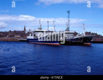 dh  PETERHEAD ABERDEENSHIRE Fishing boats alongside harbour quayside deep sea trawlers scotland vessels - Stock Photo