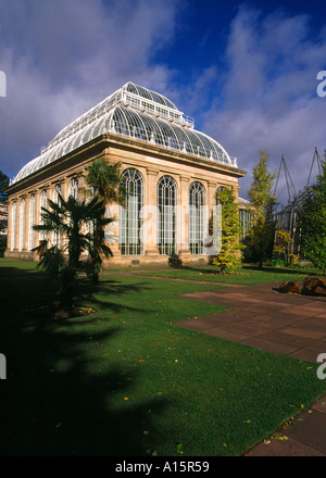 dh  ROYAL BOTANIC GARDEN EDINBURGH Palm tree glasshouse uk greenhouse gardens botanical