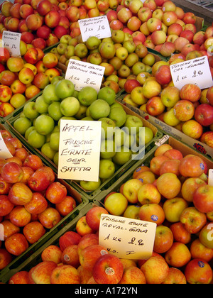 apples on the market - Stock Photo