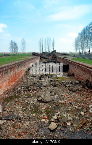 The remains of the gas chambers at Auschwitz concentration camp, Birkenau, Poland. - Stock Photo