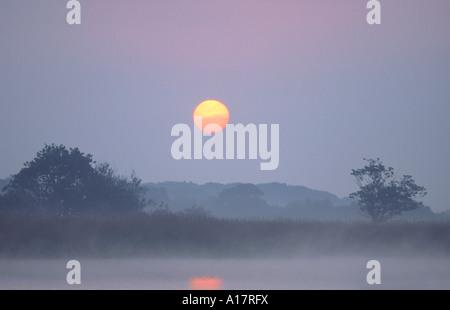Misty Sunrise over Hickling Broad Norfolk  UK