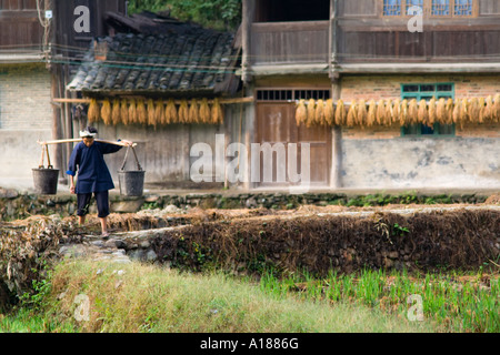 Farm Scene Woman Carrying Buckets Dong Ethnic Minority Town of Zhaoxing China - Stock Photo