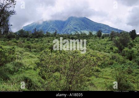 Virunga mountains habitat of the mountain grillas Uganda - Stock Photo