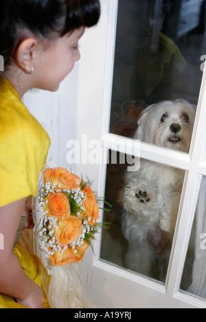 Miami Florida home wedding Jehovah's Witnesses Hispanic family relatives flower girl dog pet kept behind door - Stock Photo