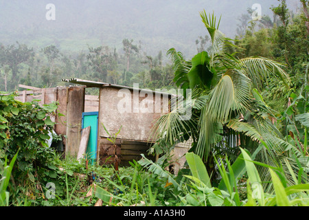 A hut in the Northern Hills of Grenada - Stock Photo