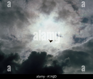 Fighter plane against stormy sky - Stock Photo