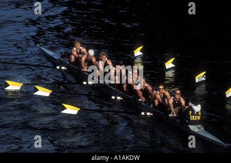 USA, Washington, Seattle, Rowing team warms up at sunrise on Lake Union before Windermere Cup Race - Stock Photo