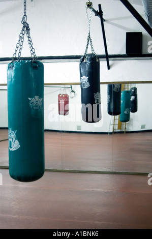 View of punching bags hanging in boxing gym - Stock Photo
