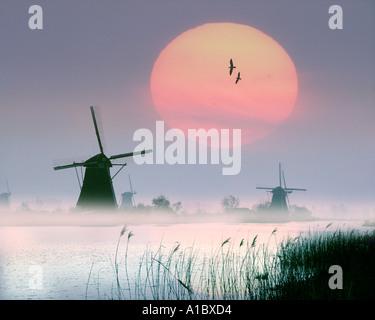 NL -  ALBLASSERWAARD: Windmills at Kinderdijk near Rotterdam - Stock Photo
