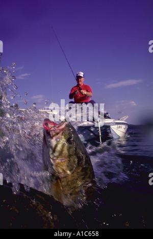Small mouth bass fishing Dale Hollow Lake Kentucky - Stock Photo