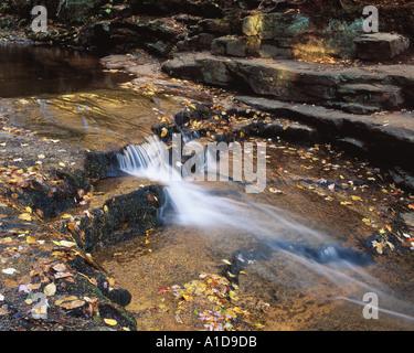 cascade along Bemis Brook Crawford Notch State Park New Hampshire USA - Stock Photo