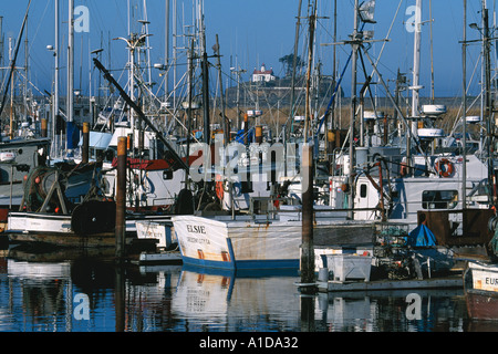 Commercial fishing boats docked in marina at Crescent City California with Battery Point Light House in background - Stock Photo