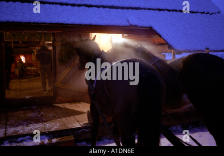 Zakopane horses cottage and fireplace Sleigh ride - Stock Photo
